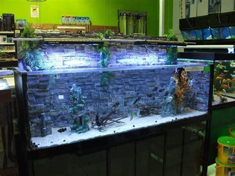 vasche acquari acquari da arredamento accessori per acquario acquari