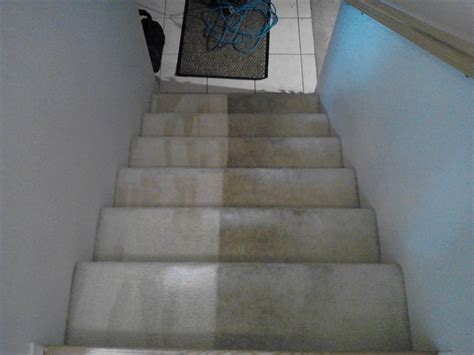 carpet and upholstery cleaning pictures carpet cleaning dublin