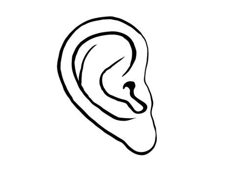 imagenes de ojos y oidos oreja para colorear