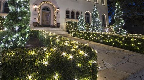 lights for bushes lights installation guide