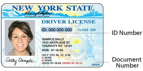 State Id Template by Sle Photo Documents New York State Dmv