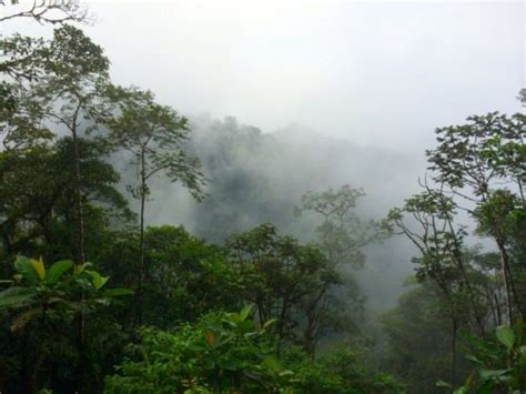 Small Villages In Usa experiencing the mashpi cloud forest