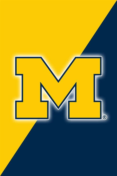 michigan wolverines colors 74 best michigan wolverines images on