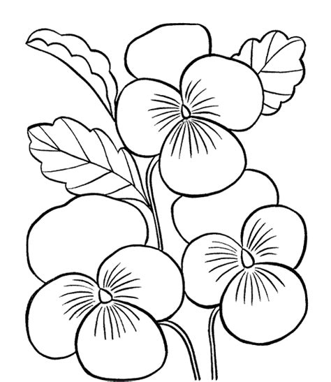 beautiful flowers jumbo large print coloring book flowers large print easy designs for elderly seniors and adults to relieve easy coloring book for adults volume 1 books 199 i 231 ek boyama sayfalar