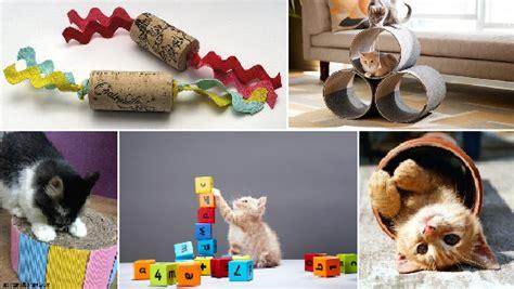 giochi per adulti da fare in casa giochi per gatti 10 idee per realizzarli con il fai da te