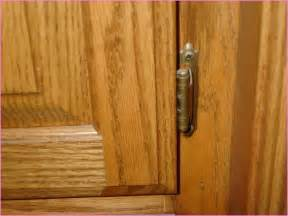 Hinges For Kitchen Cabinets Doors Cabinet Door Hinges