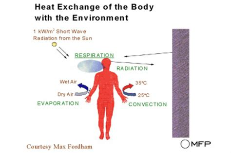 A Heat L Produces What Of Radiation by Physics