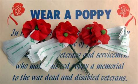 the reason vets hand out poppies stamfordadvocate