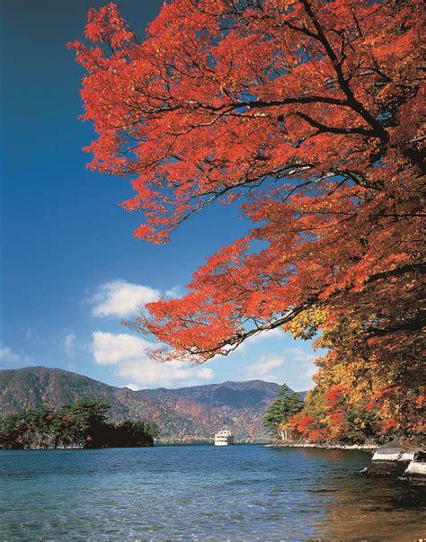 in fall fall leaves at lake towada aptinet aomori sightseeing guide