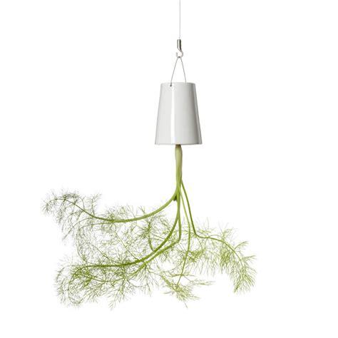 Sky Planter by Boskke Sky Planter Mini
