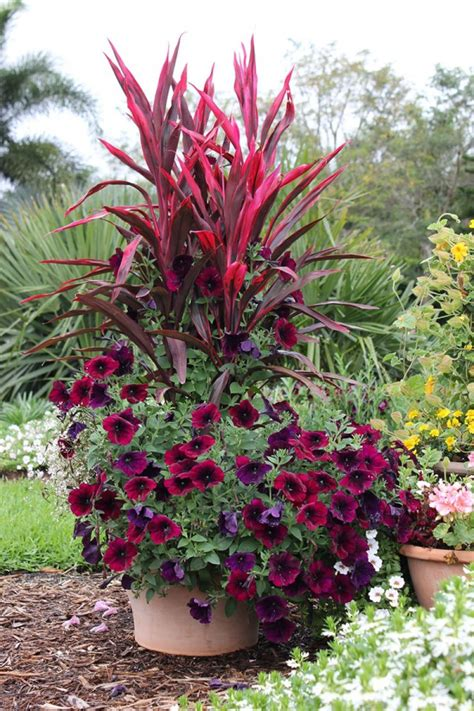 container gardening flowers 8 stunning container gardening ideas home and garden
