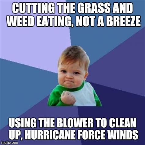 Grass Memes - success kid meme imgflip