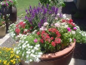 Container Flower Gardens Container Gardens