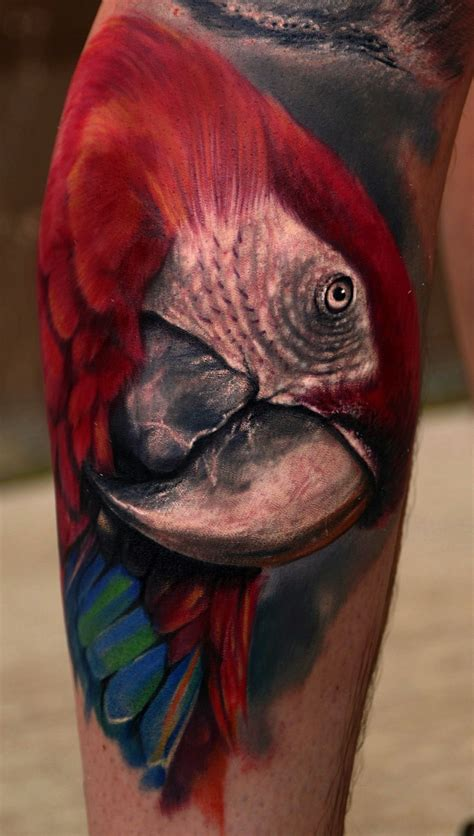 ryan hadley tattoo beautiful macaw by my husband hadley tattoos