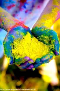 color powder holi powder bulk holi color powder