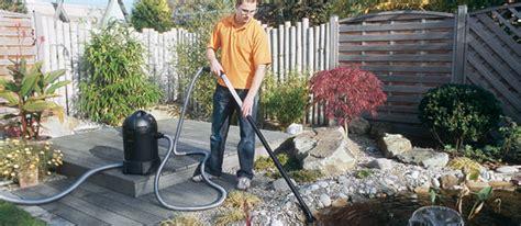 l entretien du bassin de jardin
