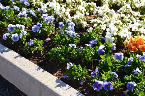 la valle dei fiori la valle dei fiori