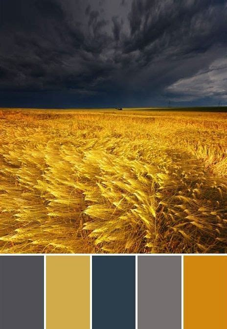 what colors go with yellow 105 best color combination inspiration and ideas images