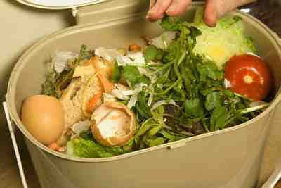 cara membuat bakso organik cara sederhana membuat kompos skala rumah tangga