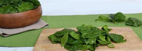 come cucinare gli spinaci come cucinare gli spinaci misya info