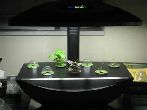 aerogarden easy efficient indoor gardening metaefficient