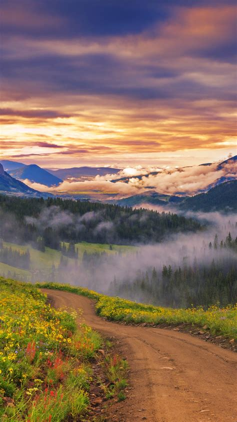 sky meadow flowers sunset mountains nature landscape