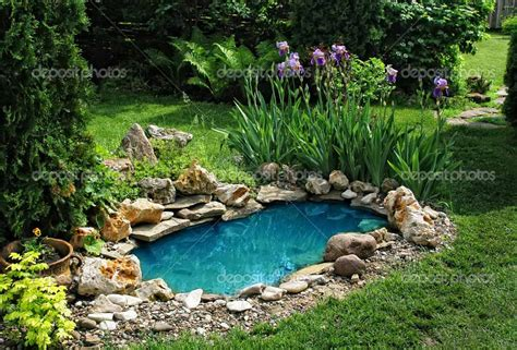backyard fishing pond small koi pond images