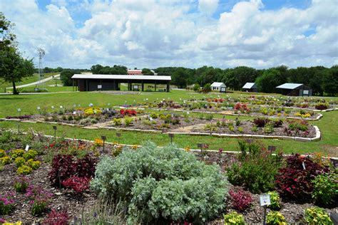 The Gardens Tamu by Agrilife Extension Myer S Park Team Up To Tout Earth Principles Agrilife Today
