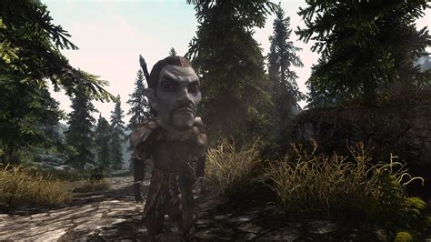 request sos textures for feminine argonian and khajiit argonian schlongs of skyrim argonian schlongs of skyrim