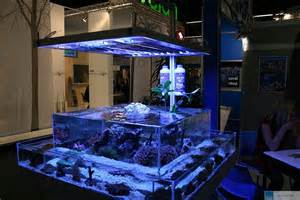 types of aquariums different types of saltwater aquariumsdifferent types of