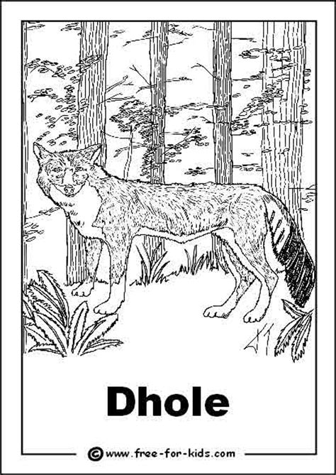 coloring pages endangered animals filipino children free coloring pages