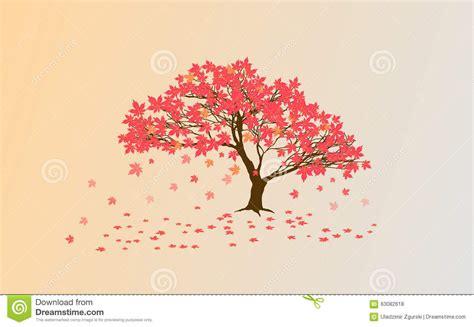 japanese maple tree drawing www pixshark com images