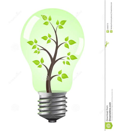 light bulb with tree royalty free stock photo image