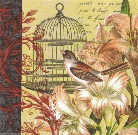 Serviette Decoupage - two 2 bird cage amarylis lunch paper napkins