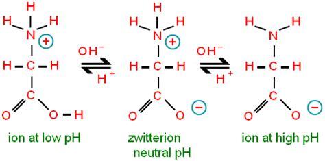 protein zwitterion absolut biochemistry