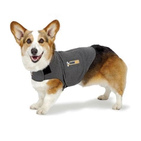 thundershirts for dogs ren s pets depot thunderworks thundershirt for dogs grey