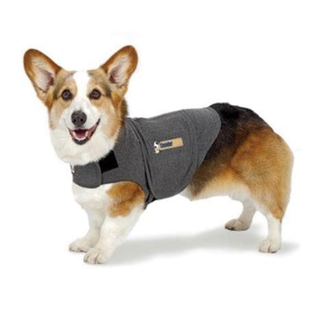 thundershirt for dogs ren s pets depot thunderworks thundershirt for dogs grey