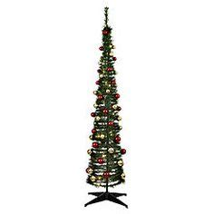 christmas trees at sainsburys 1000 images about trees on pencil tree tree company and