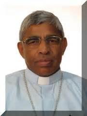 bollettino quotidiano santa sede svd curia breaking news new svd bishop fr