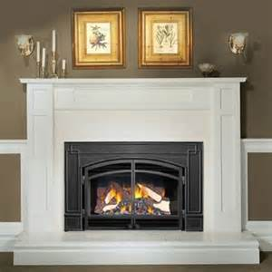 napoleon gi3600 gas fireplace insert with arched