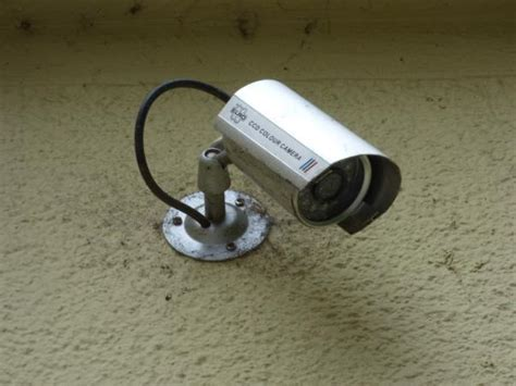 can home security cameras prevent crime deer