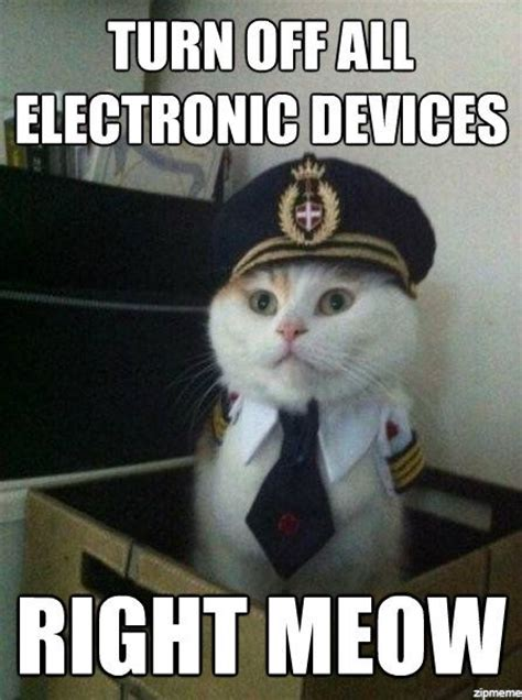 Meow Meme - right meow memes image memes at relatably com