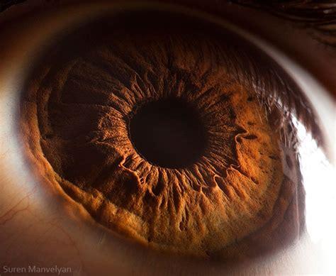 imagenes ojos humanos 25 fotograf 237 as de ojos vistos muy de cerca te dejar 225 n