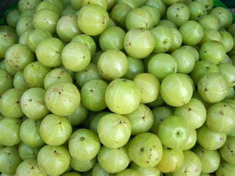 Can You Detox With Amla by Ayurveda Tips Health With Amla