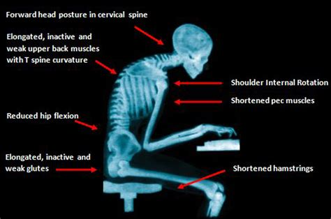 back pain from sitting at desk how to relieve lower back pain from sitting sports super
