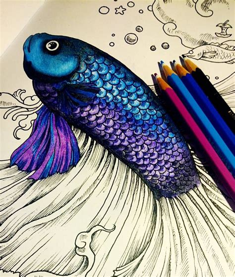 the best colored pencils for coloring books 25 b 228 sta id 233 erna om f 228 rglagda blyertsteckningar p 229