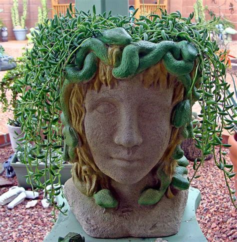 medusa planter 84 best head planters and pots images on pinterest