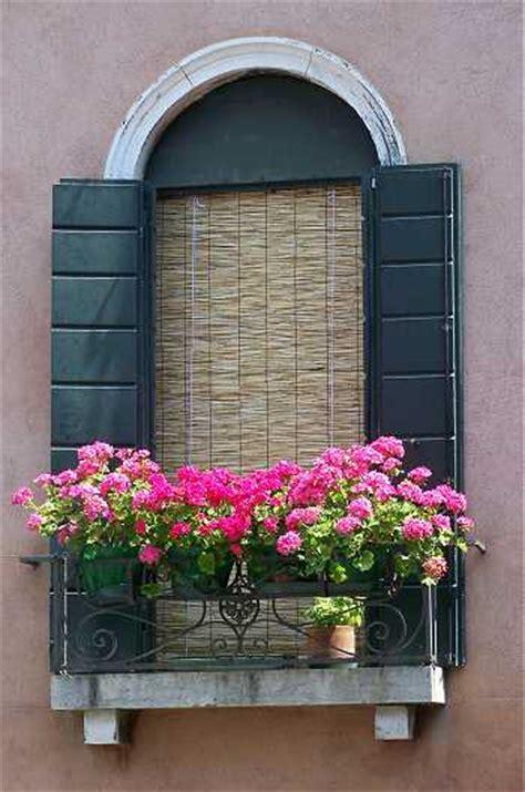 balcony window boxes autumn cottage diarist everywhere a garden