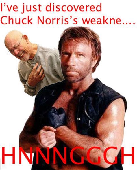 Know Your Meme Chuck Norris - image 44161 hnnnnnng know your meme