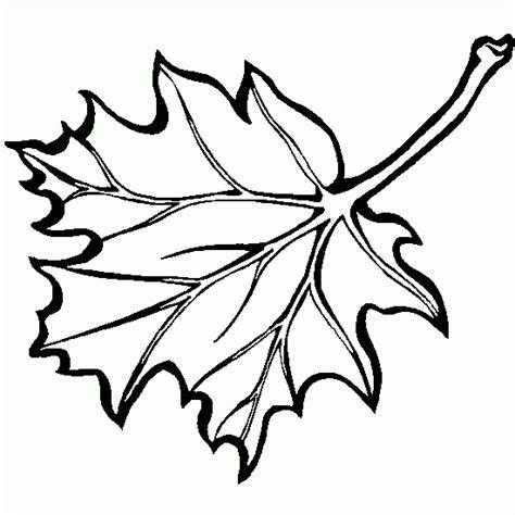 hojas de otono coloring pages free hojas de oto 241 o coloring pages